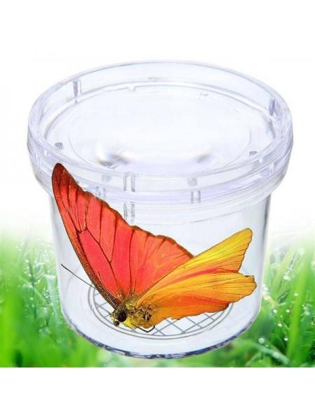 Увеличительная баночка для ловли изучения насекомых