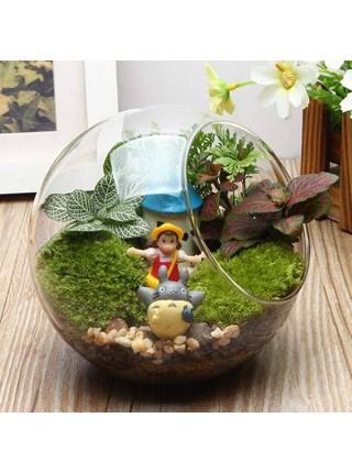 Стеклянная ваза на подставке для комнатного декора