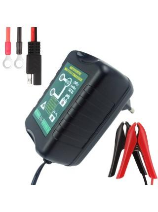Зарядное устройство для свинцово-кислотных аккумуляторов 6В/12В