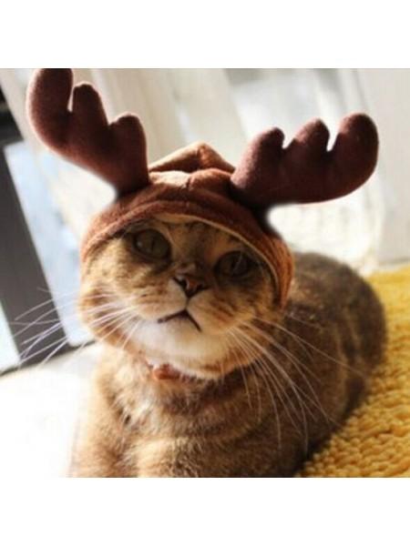 Рождественский костюм для домашних животных