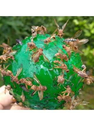Подвесная липкая ловушка для мух